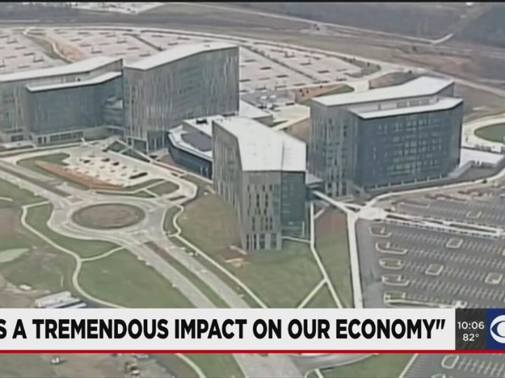 Business expert breaks down cause, impact of Cerner layoffs | News